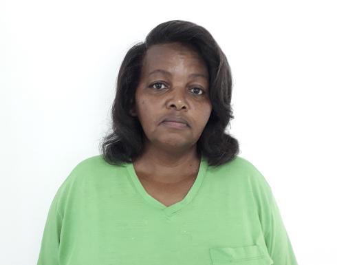 Luzia Aparecida Mendes