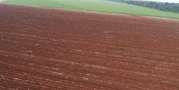 terra preparada para plantar cana