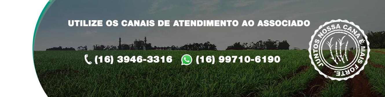 https://www.canaoeste.com.br/nossa-estrutura/