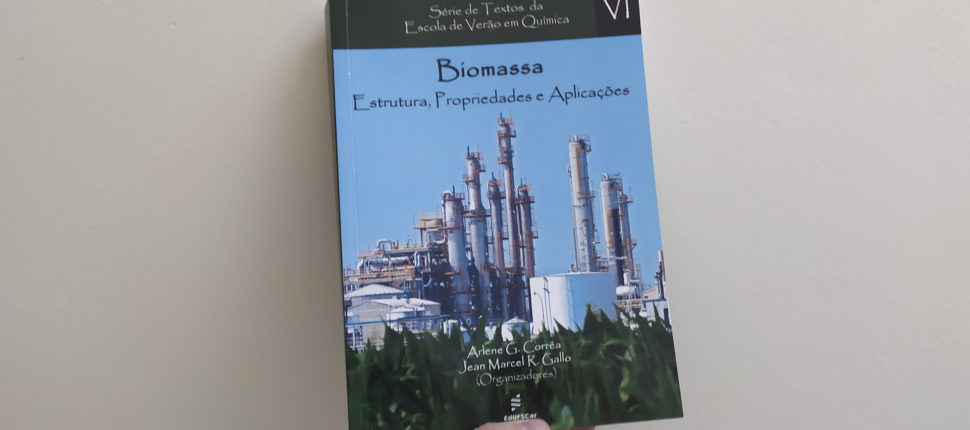 Biomassa: estrutura, propriedades e aplicações