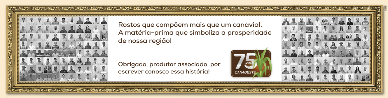 https://www.canaoeste.com.br/canaoeste/